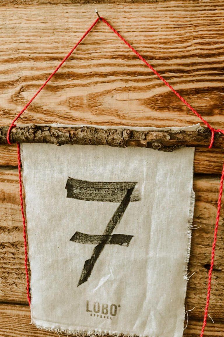 Bandeira-7